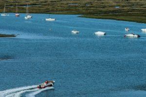 Turismo do Algarve entregou ao ICNF equipamento para promover a Ria Formosa